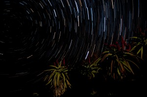Star trail2b